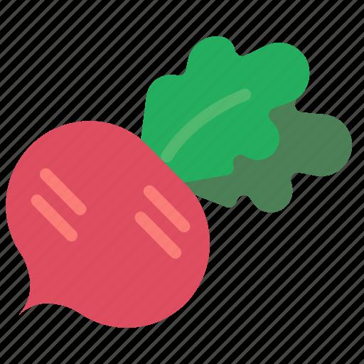 and, drink, food, radish, turnip, veg, vegetable icon