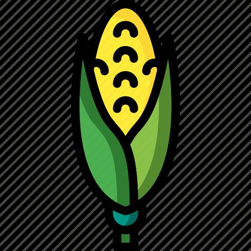 And, cob, corn, drink, food, veg, vegetable icon - Download on Iconfinder
