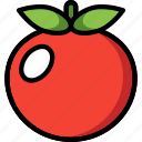 drink, food, fruit, tomato, veg, vegetable icon