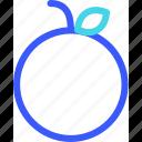 25px, iconspace, orange icon