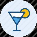 drink, food, squash icon