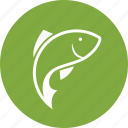 carp, carp fishing, fish, fishing, wildlife icon