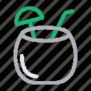 beverage, coconut, drink, food, straw