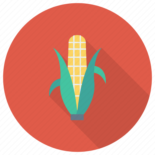 cooking, corn, eating, food, grain, popcorn, vegetable icon