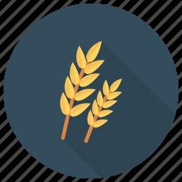 breakfast, flour, food, grain, healthy, nature, wheat icon