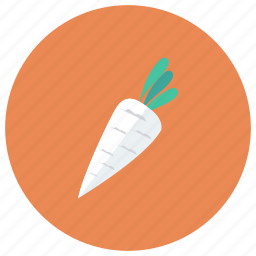 carrot, cooking, food, fruit, healthy, package, vegetable icon