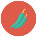 chili, food, green, greenchili, hot, pepper, red icon