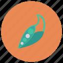 food, fresh, green, healthy, leaf, pea, vegetable icon