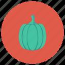 butternut, coocking, food, fruit, garden, squash, vegetable icon