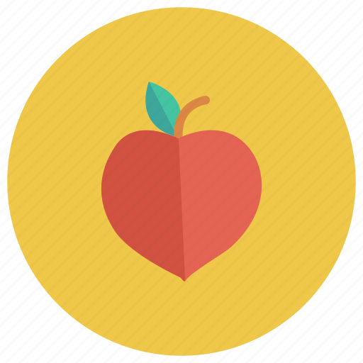 Apricot, food, freshfruit, fruit, fruits, healthy, peach icon - Download on Iconfinder