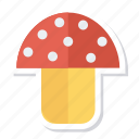 champignon, coocking, food, mushroom, mushrooms, plant, vegetable icon