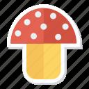 champignon, coocking, food, mushroom, mushrooms, plant, vegetable icon
