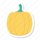 cooking, eating, food, happy, healthy, pumpkin, vegetable