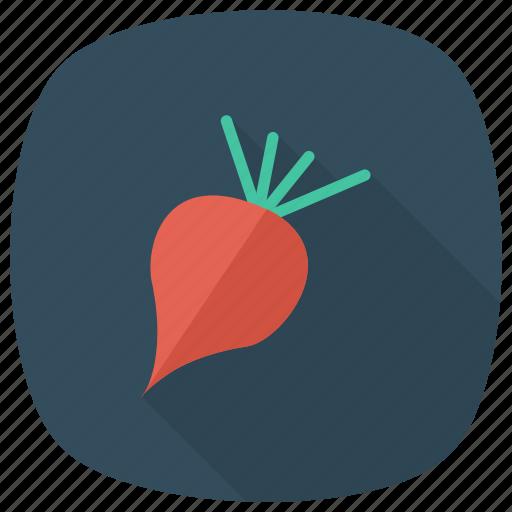 beets, cooking, food, ingredients, meal, radish, vegetable icon