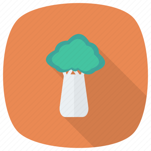 agriculture, cabbage, food, ingredient, salad, vegetable icon