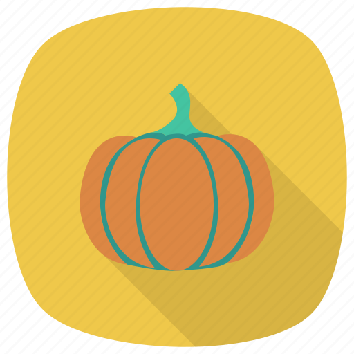Food, cooking, decoration, healthy, fruit, vegetable, pumpkin icon