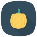 cooking, eating, food, happy, healthy, pumpkin, vegetable icon
