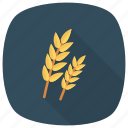breakfast, flour, food, grain, healthy, nature, wheat icon