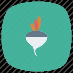 beet, beets, food, fresh, meal, radish, vegetable icon