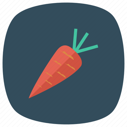 carrot, cooking, food, freshcarrot, healthy, rabbit, vegetable icon