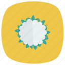 cauliflower, cooking, diet, food, healthyfood, salad, vegetable icon
