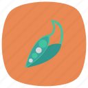 food, fresh, green, healthy, leaf, pea, vegetable icon