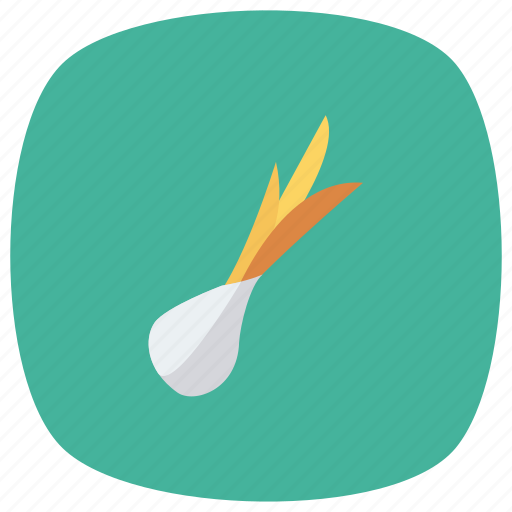 cook, cooking, food, garlic, kitchen, onion, vegetable icon