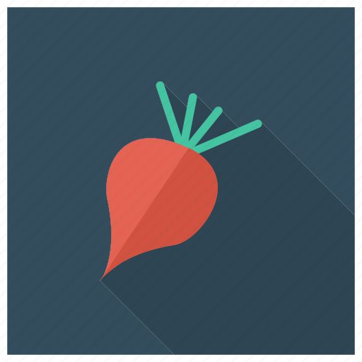 beets, cooking, food, ingredients, meal, radish, vegetable icon