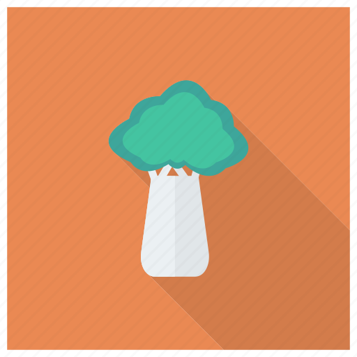 Agriculture, cabbage, food, ingredient, salad, vegetable icon - Download on Iconfinder