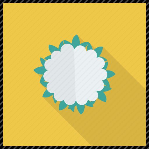 Cauliflower, cooking, diet, food, healthyfood, salad, vegetable icon - Download on Iconfinder