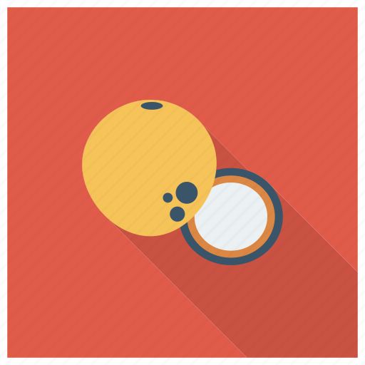 Chairs, coconut, coconutslice, cooking, drink, food, fruit icon - Download on Iconfinder