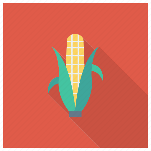 Cooking, corn, eating, food, grain, popcorn, vegetable icon - Download on Iconfinder