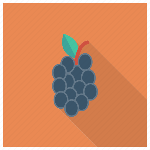berry, bunch, food, fruit, grape, healthy, wine icon