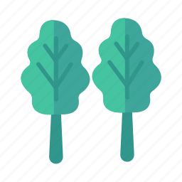food, healthy, iron, leaf, plant, spinach, vegetable icon