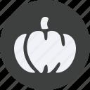 beverage, drinks, food, kitchen, pumpkin, restaurant, ripe icon