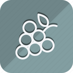 appliance, cooking, food, gastronomy, graps, kitchen, utensils icon