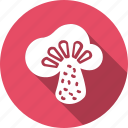 food, fresh, fungus, helthy, kitchen, mushroom, vegetable icon