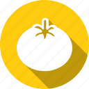 food, ingredient, kitchen, radish, red, tomato, vegetables icon