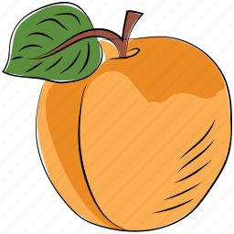 diet, fruit, health diet, orange, organic, peach, prunus persica icon