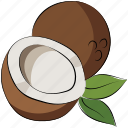 coconut, coconut palm, fruit, healthy diet icon