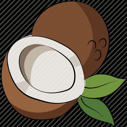 coconut, coconut palm, fruit, healthy diet icon