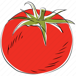 fruit, healthy food, nutrition, organic, tomato icon