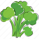 broccoli, healthy food, nutrition, vegetable icon