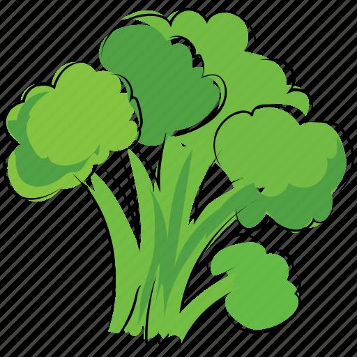 broccoli, healthy food, nutrition, vegetable icon