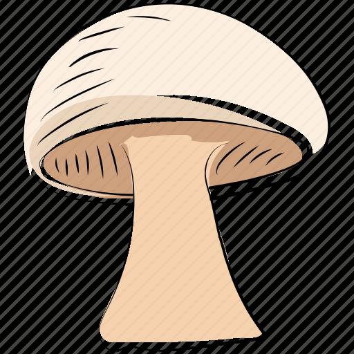 diet, food, fungi, mushroom, mushroom button, toadstool icon