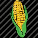 maize, food, corn, pole corn, sweet corn, sugar corn icon