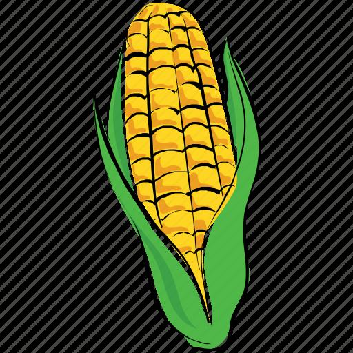 corn, food, maize, pole corn, sugar corn, sweet corn icon