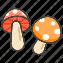1f344, b, mushroom icon