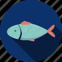 fish, food, seafood