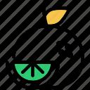 citrus, food, fruit, grapefruit, orange icon